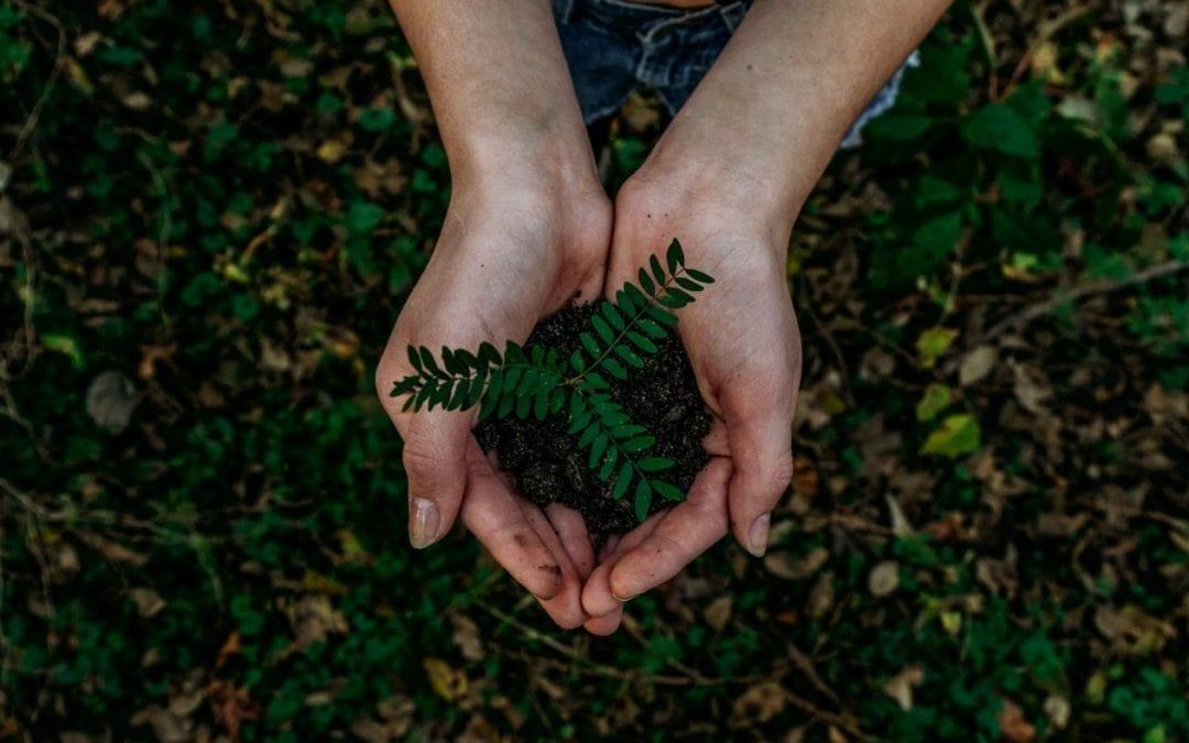 Inilah 5 Ide Bisnis Yang Menghasilkan Produk Ramah Lingkungan